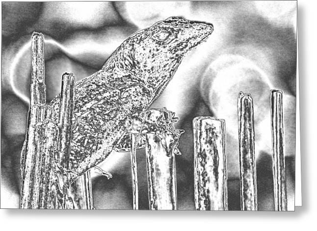 Bamboo Fence Greeting Cards - Sunning Lizard Chromed Greeting Card by Belinda Lee