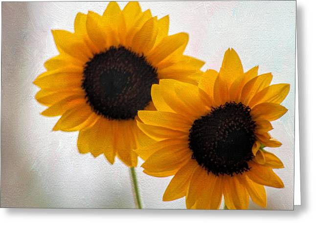 Tammy Espino Greeting Cards - Sunny flower on a rainy day Greeting Card by Tammy Espino