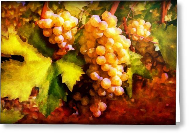 Sunny Grapes - edition 2 Greeting Card by Lilia D