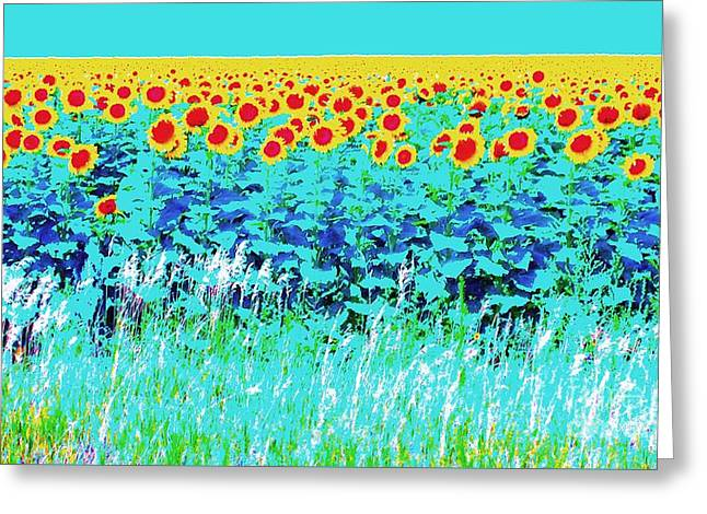 Sunny Kansas Greeting Card by Ann Johndro-Collins