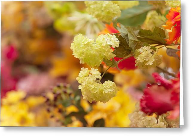 Flower Design Greeting Cards - Sunny Mood. Amsterdam Flower Market Greeting Card by Jenny Rainbow