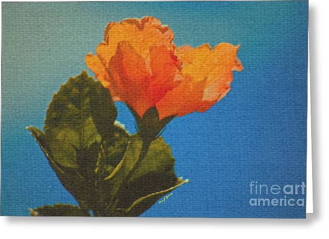 Flower Design Greeting Cards - Sunny Orange Greeting Card by Cheryl Young