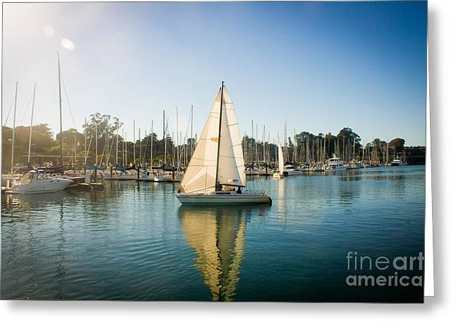 Santa Cruz Sailboat Greeting Cards - Sunny Sail-SC Harbor Greeting Card by George  Saitas