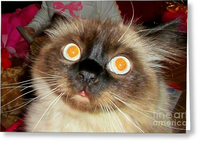 Siamese Cat Greeting Card Greeting Cards - Sunny Side Up Greeting Card by John Malone