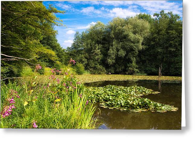 Deutschland Greeting Cards - Sunny summer day at the lake beautiful green and blue colors Greeting Card by Matthias Hauser