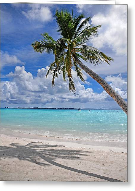 Travel Agency Greeting Cards - Sunny Tropic Day. Maldives Greeting Card by Jenny Rainbow