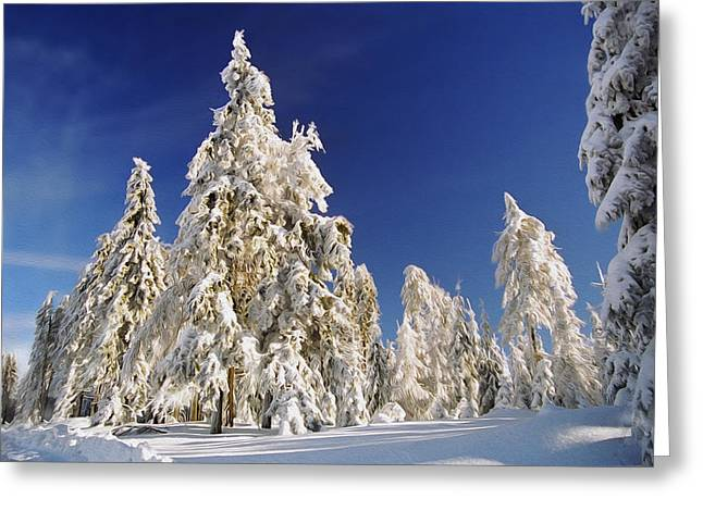Peaceful Scenery Greeting Cards - Sunny Winter Day Greeting Card by Aged Pixel