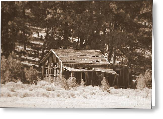 Old Cabins Greeting Cards - Sunny with Two Porches Greeting Card by Carol Groenen