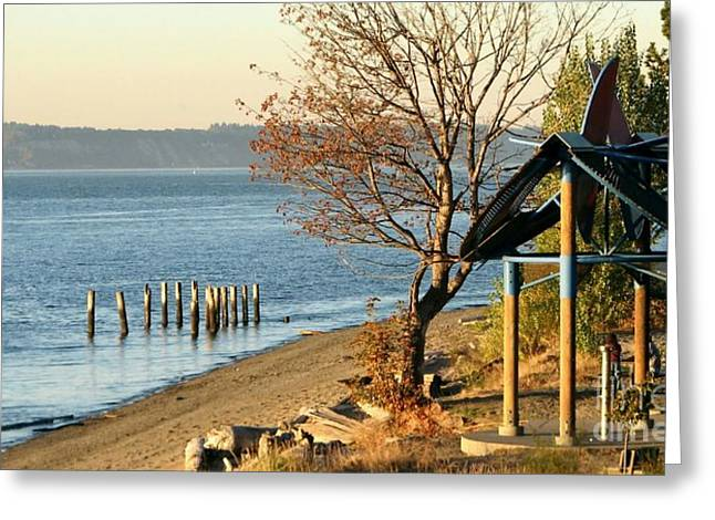 South Puget Sound Greeting Cards - Sunnyside Greeting Card by Chris Anderson