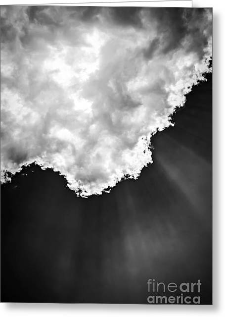 Beaming Greeting Cards - Sunrays in black and white Greeting Card by Elena Elisseeva