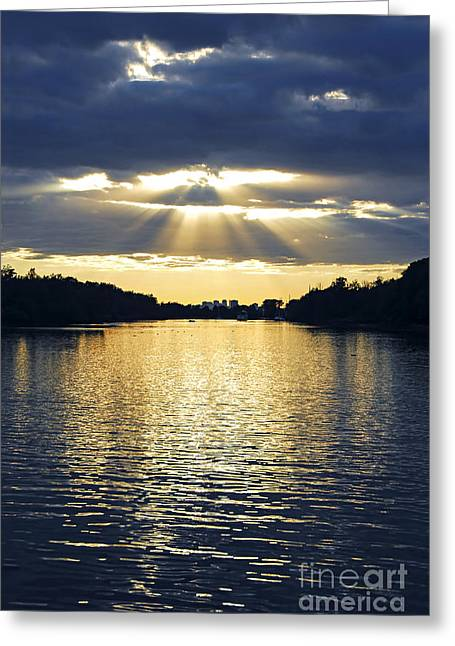 Ontario - Canada Greeting Cards - Sunrays on Toronto Island Greeting Card by Elena Elisseeva