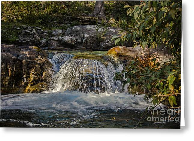 Gravel Road Greeting Cards - Sunrift Gorge  Falls Greeting Card by Robert Bales