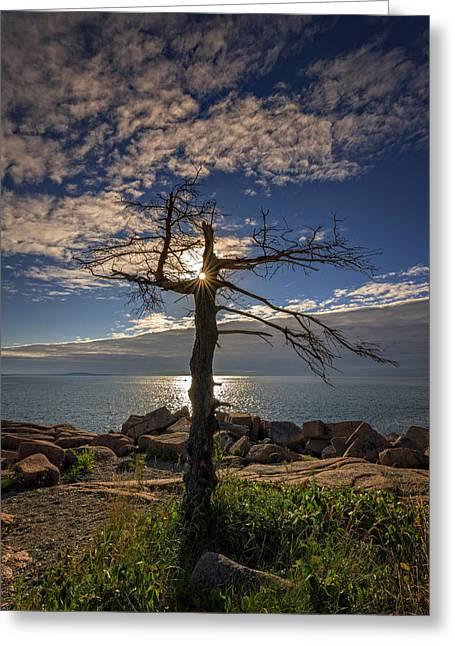 New England Ocean Greeting Cards - Sunrise Acadia Greeting Card by Rick Berk
