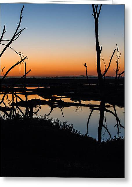 Reserve Greeting Cards - Sunrise Across the Sacred Land Greeting Card by Denise Dube