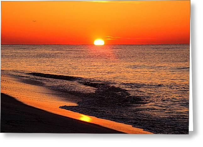 Alabama Greeting Cards - Sunrise at Alabama Point East Greeting Card by Michael Thomas
