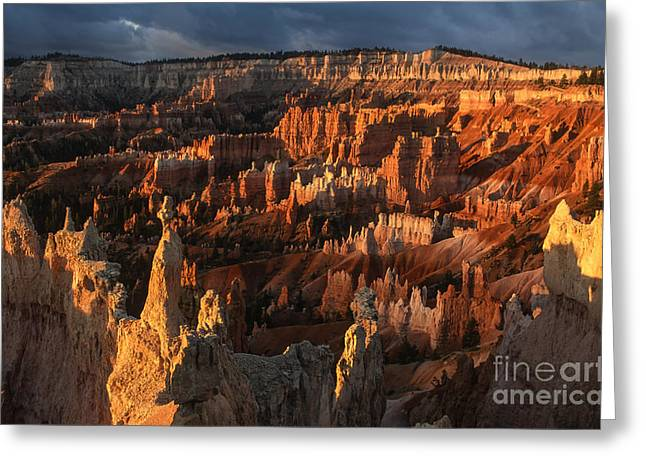 First Sunset Greeting Cards - Sunrise at Bryce Canyon Greeting Card by Sandra Bronstein