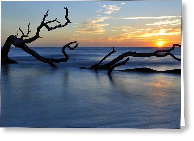 Beach Photographs Greeting Cards - Sunrise at Driftwood Beach 7.3 Greeting Card by Bruce Gourley