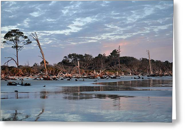 Beach Photograph Greeting Cards - Sunrise at Driftwood Beach 7.8 Greeting Card by Bruce Gourley
