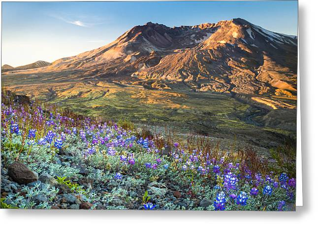 Johnston Greeting Cards - Sunrise at Mount St. Helens Greeting Card by Kyle Wasielewski