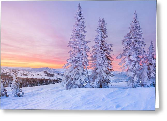 Skiing Fine Art Greeting Cards - Sunrise at Powder Mountain Greeting Card by Rory Wallwork