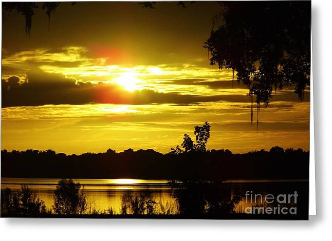 Reflection In Water Greeting Cards - Sunrise At The Lake Greeting Card by D Hackett