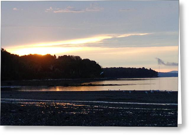 Maine Pastels Greeting Cards - Sunrise at the Moorings Greeting Card by Michael Kenneway