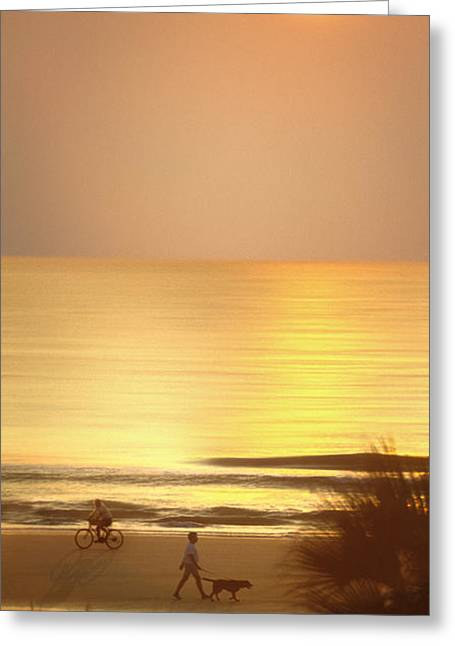 Dog Walking Digital Art Greeting Cards - Sunrise at Topsail Island Panoramic Greeting Card by Mike McGlothlen