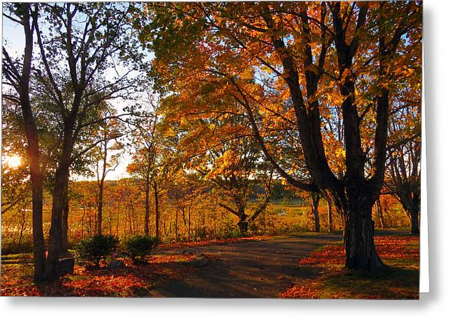 East Dennis Ma Greeting Cards - Sunrise Autumn Greeting Card by Dianne Cowen
