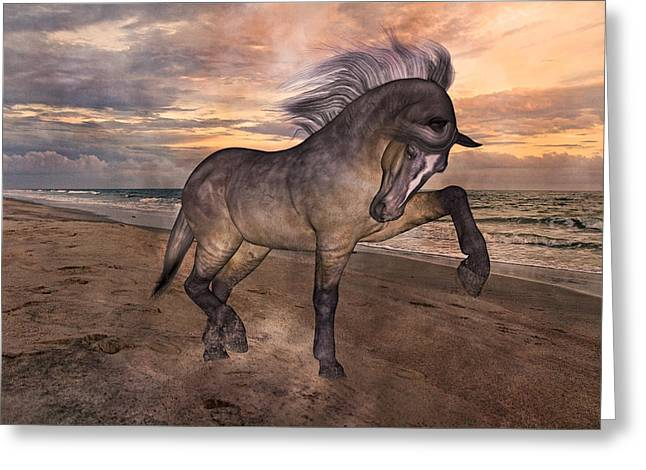 Trot Greeting Cards - Sunrise Lower Outer Banks Greeting Card by Betsy C  Knapp