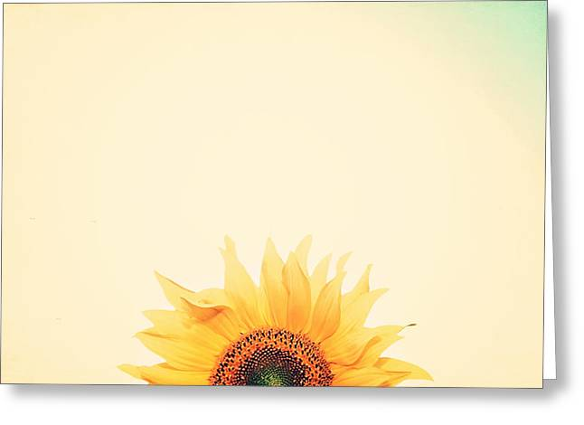 Yellow Flowers Greeting Cards - Sunrise Greeting Card by Carrie Ann Grippo-Pike
