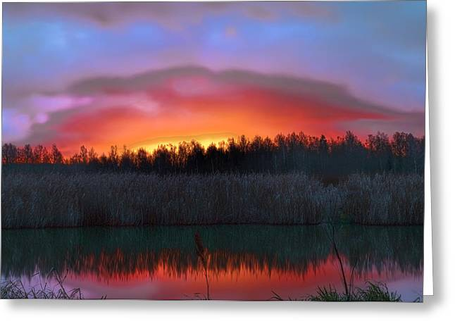Reflections Of Sun In Water Greeting Cards - sunrise December 2014 over the creek of Enkoping Sweden Greeting Card by Leif Sohlman