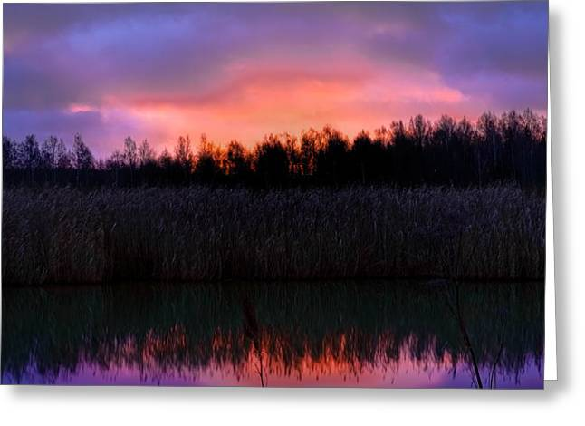 Reflections Of Sun In Water Greeting Cards - sunrise December 9 2014 over the creek of Enkoping Sweden Greeting Card by Leif Sohlman