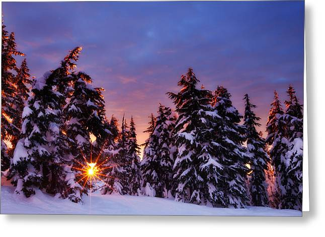 Winter Prints Greeting Cards - Sunrise Dreams Greeting Card by Darren  White
