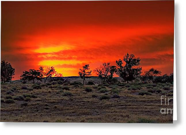 Haybale Greeting Cards - Sunrise Dune Greeting Card by Robert Bales