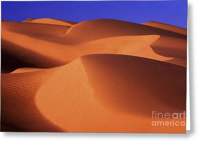Sand Patterns Greeting Cards - Sunrise Dunes 312 Greeting Card by Paul W Faust -  Impressions of Light