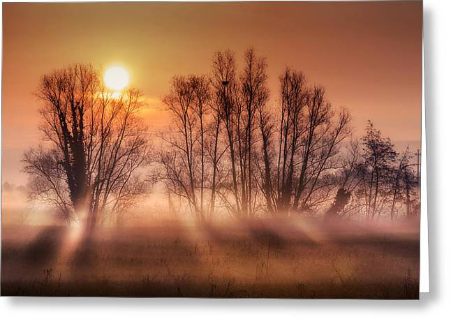 Winter Scenes Rural Scenes Pyrography Greeting Cards - Sunrise Greeting Card by Elisa Spreafichi