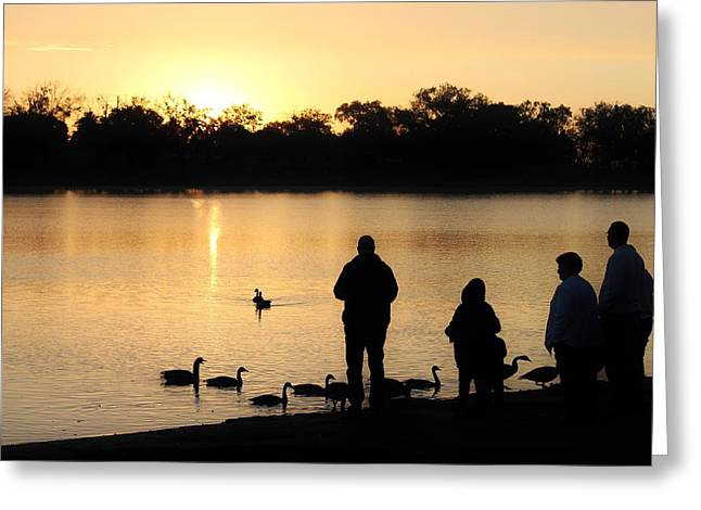 Prospects Greeting Cards - Sunrise Feeding Greeting Card by Diane Alexander