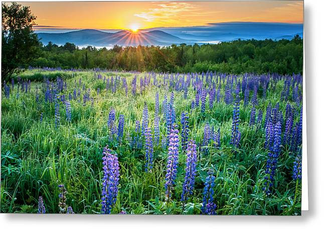 Spectacular Greeting Cards - Sunrise from Sampler fields - Sugar Hill New Hampshire Greeting Card by Thomas Schoeller