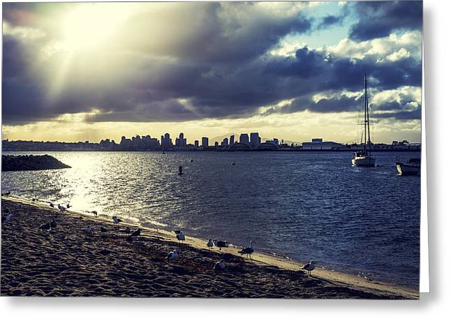 San Diego Harbor Greeting Cards - Sunrise from the Shore Greeting Card by Joseph S Giacalone