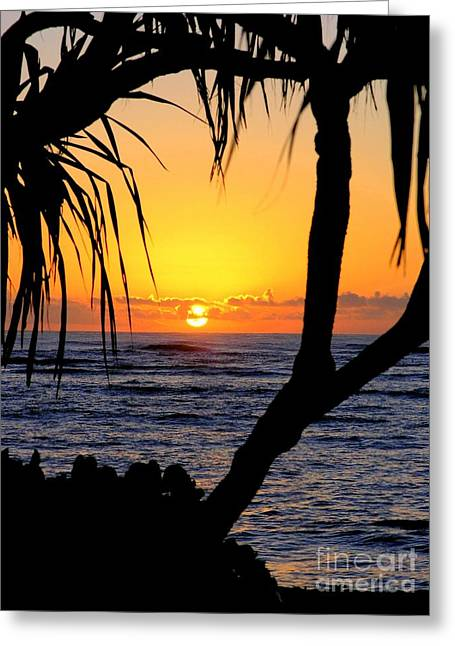 Mary Deal Greeting Cards - Sunrise Fuji Beach Kauai Greeting Card by Mary Deal