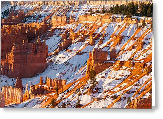 Snow Tree Prints Greeting Cards - Sunrise in Bryce Canyon National Park Greeting Card by Henk Meijer Photography