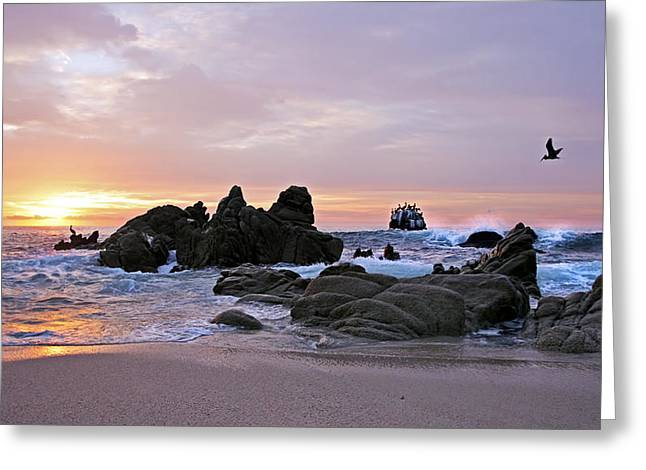 Sunrise In Cabo San Lucas Greeting Card by Marcia Colelli
