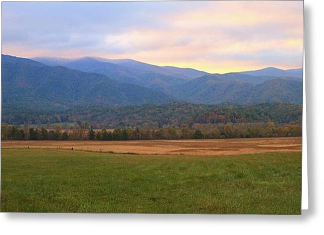 Pigeon In Park Greeting Cards - Sunrise In Cades Cove Greeting Card by Dan Sproul