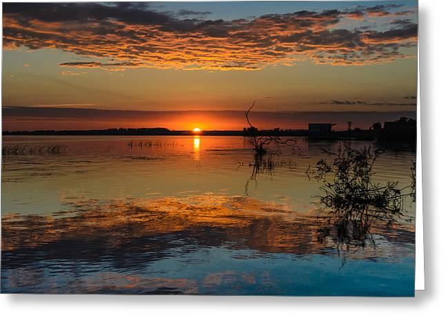 Sunshine Pyrography Greeting Cards - Sunrise in Danube Delta Greeting Card by Attila Simon