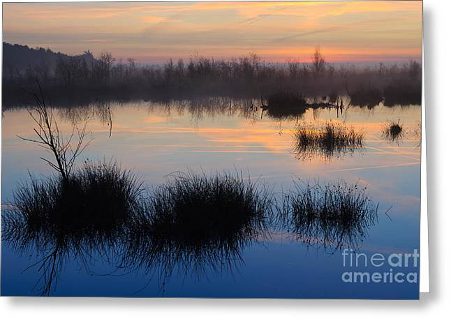 Reflecting Water Greeting Cards - Sunrise In Germany Greeting Card by Willi Rolfes