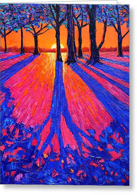 Abstract Expressionist Greeting Cards - Sunrise In Glory - Long Shadows Of Trees At Dawn Greeting Card by Ana Maria Edulescu