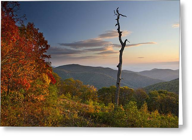 Shenandoah National Park Greeting Cards - Sunrise in Shenandoah National Park Greeting Card by Pierre Leclerc Photography