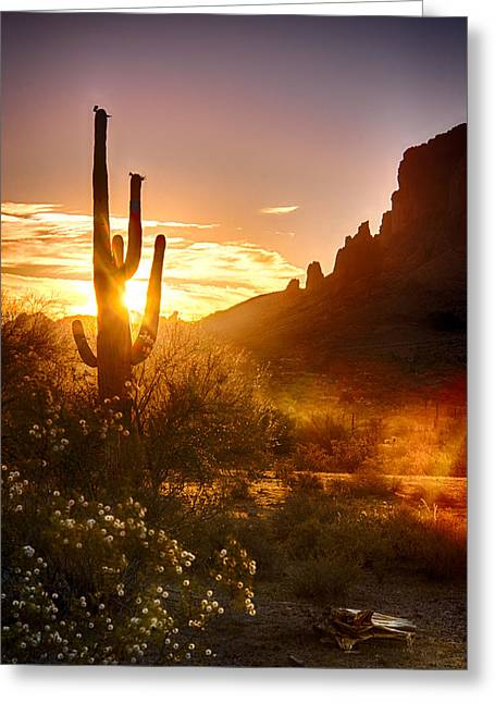 The Superstitions Greeting Cards - Sunrise in the Superstitions  Greeting Card by Saija  Lehtonen