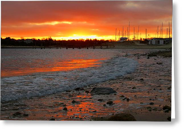 Harbor Sesuit Harbor Greeting Cards - Sunrise in Winter Greeting Card by Dianne Cowen