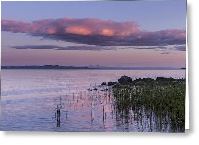 Champlain Greeting Cards - Sunrise Lake Champlain shore Vermont clouds Greeting Card by Andy Gimino